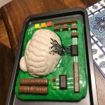 Yazdan NERD lab brain cake